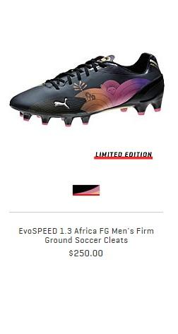 evospeed1.3Africa